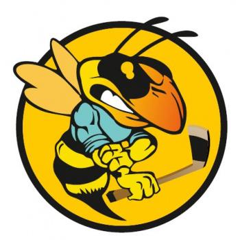 Hokeja klubs Bites