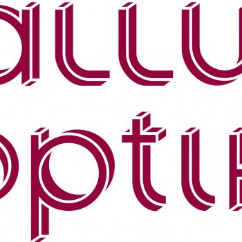 Gallus optika